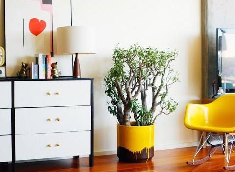 Cheap Home Decor for a Beautiful Home